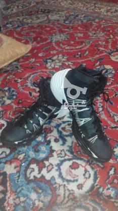 کفش ورزشی نایک در گروه خرید و فروش ورزش فرهنگ فراغت در آذربایجان شرقی در شیپور-عکس1