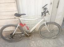 دوچرخه شیمارو سایز 26 در شیپور-عکس کوچک