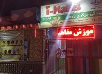 فراخوان فوری - جذب کادر اداری در شیپور-عکس کوچک