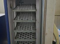 دستگاه جوجه کشی210تایی در شیپور-عکس کوچک