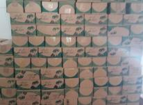 فروش خرما خوصوی جم در شیپور-عکس کوچک