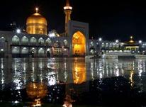 تور ریلی مشهد ویژه مهر و آبان در شیپور-عکس کوچک