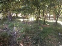 500 متر باغ در دماوند در شیپور-عکس کوچک