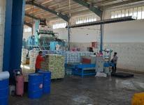 استخدام کارگر کارخانه سبزه و منشی و حسابدار در شیپور-عکس کوچک