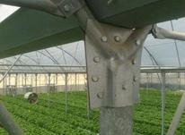 استخدام مهندس کشاورزی در شیپور-عکس کوچک
