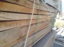 چوب الوار بلوط در شیپور-عکس کوچک
