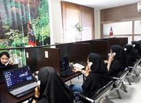 کارشناس پشتیبانی و مدیریت محتوای سایت در شیپور-عکس کوچک