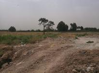 فروش زمین خام 2 هکتاری شهرک رضوان در شیپور-عکس کوچک