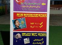 مسوول تبلیغات و جذب  در شیپور-عکس کوچک