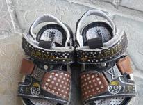 این کفش به شماره 21  در شیپور-عکس کوچک