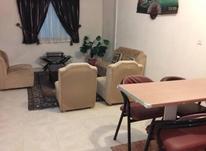 آپارتمان 60  متری در مرکز شهر در شیپور-عکس کوچک
