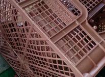 کارگر ساده  در سبد سازی  در شیپور-عکس کوچک