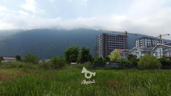 زمین  1024 متری داخل بافت و جواز و سند در گروه خرید و فروش املاک در مازندران در شیپور-عکس1