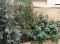 آپارتمان 78 متری در میرداماد  در شیپور-عکس کوچک