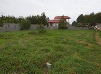 زمین مسکونی 900 متر در چاف و چمخاله در شیپور-عکس کوچک