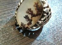 یک جفت انگشتر نقره شجر در شیپور-عکس کوچک