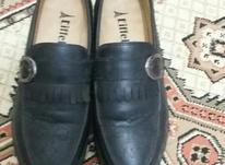 کفش کالج مشکی نو نو در شیپور-عکس کوچک
