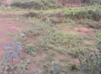 فروش زمین مسکونی چلک ۴۰۰ متر در شیپور-عکس کوچک