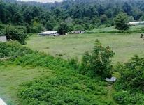 زمین بافت مسکونی و باغات 10هکتاری در نشتارود  در شیپور-عکس کوچک