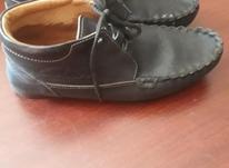 کفش سایز 38 تا 39  در شیپور-عکس کوچک