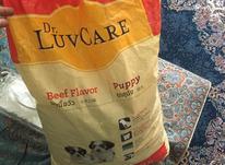 غذای سگ 9کیلویی در شیپور-عکس کوچک