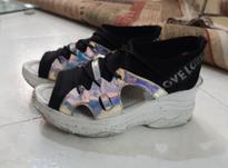 کفش هولوگرامی سایز40 در شیپور-عکس کوچک