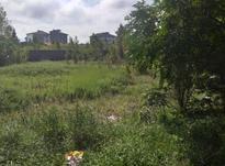 فروش زمین 307 متری در خیابان اطبا در شیپور-عکس کوچک