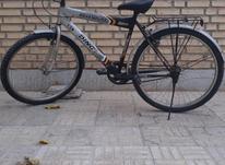 دوچرخه معمولی تنه سبک در شیپور-عکس کوچک