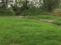 زمین مسکونی ۱۵۰ متری محمودآباد در شیپور-عکس کوچک