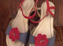 کفش دخترانه برزیلی سایز 35 در شیپور-عکس کوچک