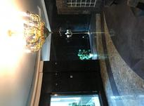 اجاره آپارتمان 255 متر در زعفرانیه در شیپور-عکس کوچک