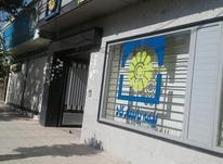بیمه زندگی پاسارگاد ویژه زنان خانه دار در شیپور-عکس کوچک