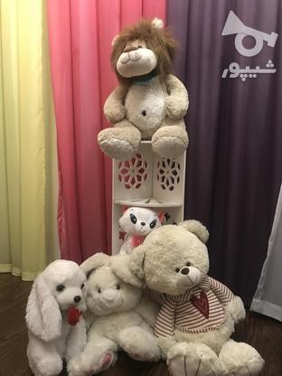 5 عروسک به همراه یک قفسه ی چوبی در گروه خرید و فروش ورزش فرهنگ فراغت در تهران در شیپور-عکس1