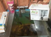 اکواریوم خانگی در شیپور-عکس کوچک