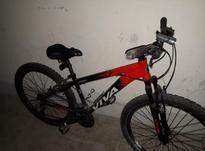 دوچرخه ویوا viva 26 در شیپور-عکس کوچک
