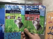 تشویقی مدادی گربه در شیپور-عکس کوچک