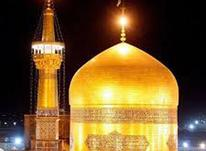 تور ویژه مشهد مقدس در شیپور-عکس کوچک
