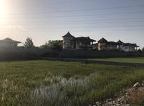 زمین مسکونی 300 متر سنددار در شیپور-عکس کوچک