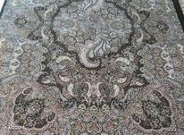 سه تخته فرش 6متری طرح سیمرغ همراه باکناره وپشتی ست در شیپور-عکس کوچک