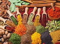 خرید پودر طعم دهنده در شیپور-عکس کوچک