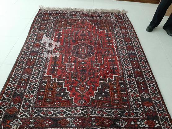 فرش دستباف در گروه خرید و فروش لوازم خانگی در فارس در شیپور-عکس1