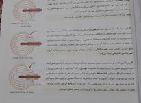 زیست شناسی یازدهم نشر و الگو در شیپور-عکس کوچک