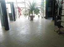 اجاره اداری 115 متر در زعفرانیه در شیپور-عکس کوچک