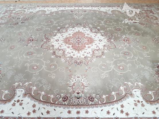 فروش 2 فرش 12 متری 700 شانه در گروه خرید و فروش لوازم خانگی در گلستان در شیپور-عکس1