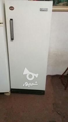یخچال فریزر فیلور  در گروه خرید و فروش لوازم خانگی در تهران در شیپور-عکس1
