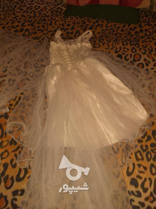 لباس مجاسی بچه گانه نو  در گروه خرید و فروش لوازم شخصی در تهران در شیپور-عکس1
