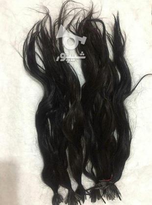 فروش فوری موی طبیعی در گروه خرید و فروش لوازم شخصی در تهران در شیپور-عکس1