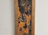 تابلو مستطیلی طرح پروانه های رها در شیپور-عکس کوچک