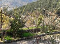 باغ درباقراباد رامیان 1000 متر  در شیپور-عکس کوچک