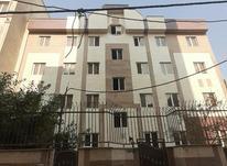 امیربهادر80متر در شیپور-عکس کوچک